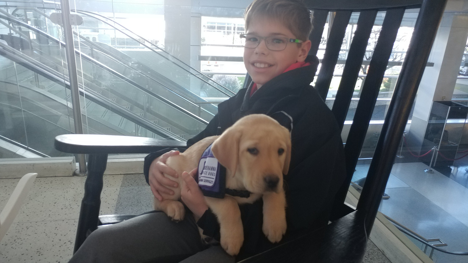 Ben Miller of Dillsburg holds Felix at the Harrisburg International Airport November 22. Miller heard about the puppies at the airport from Facebook.