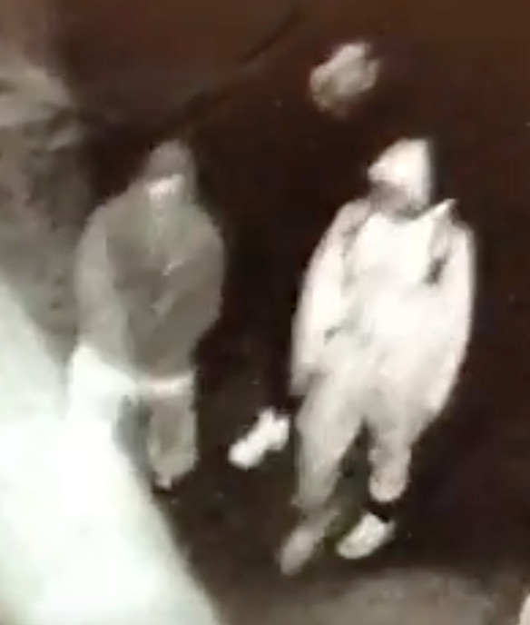 This photo taken from video shows the suspects outside the back of the store.