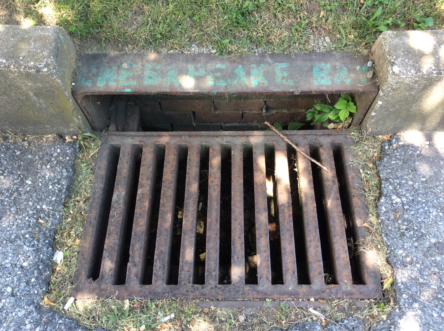 Middletown should consider levying a fee on property owners to help pay for improvements to the stormwater system being mandated by the Chesapeake Bay cleanup. This June 30 photo shows a stormwater drain on Mill Street.