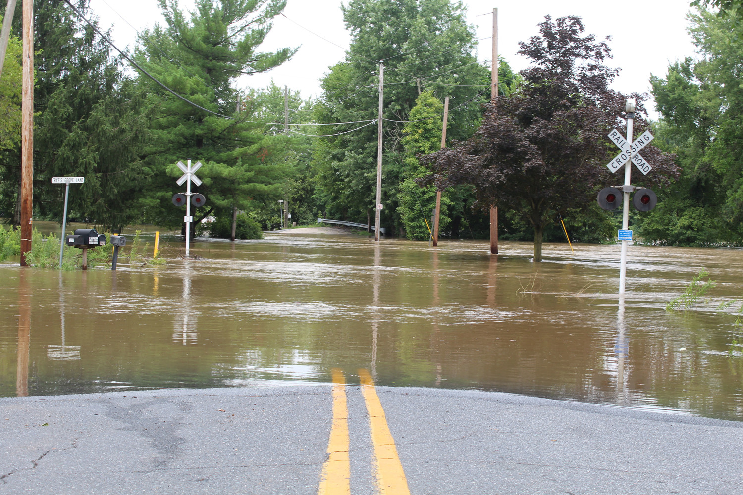Swatara Park Road was closed on Wednesday.