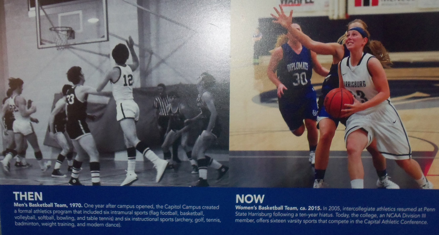 "A ""now and then"" display at Penn State Harrisburg's Class of 1969 50th renunion on June 22 featured photos of the first men's basketball team in 1970 in comparison to the 2015 women's team."