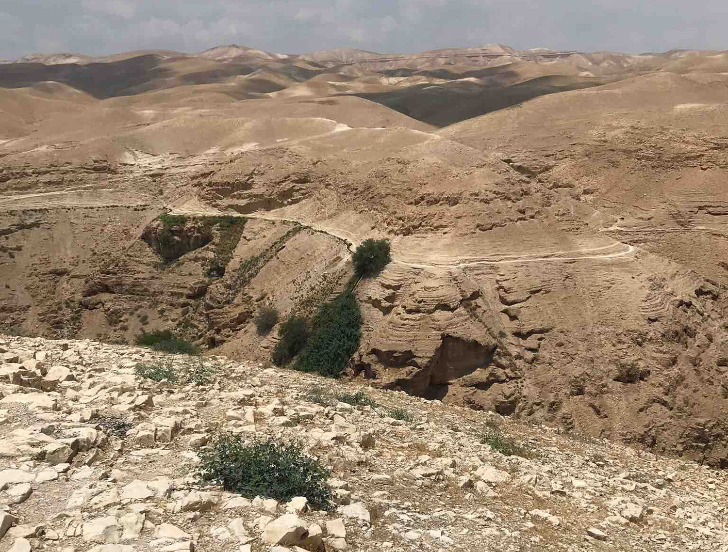 Wadi Qelt brings the parable of the Good Samaritan to life.