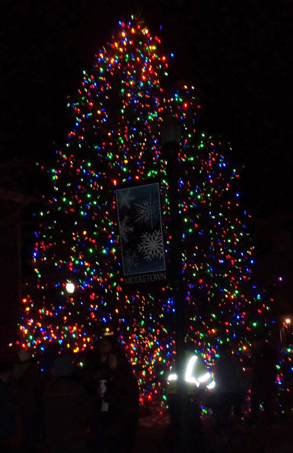 This year's Middletown borough Christmas tree was donated by Dianne Billy of Lower Swatara Township. The 37-foot tree at the tree-lighting ceremony Saturday, Nov. 30, was procured from her front yard..
