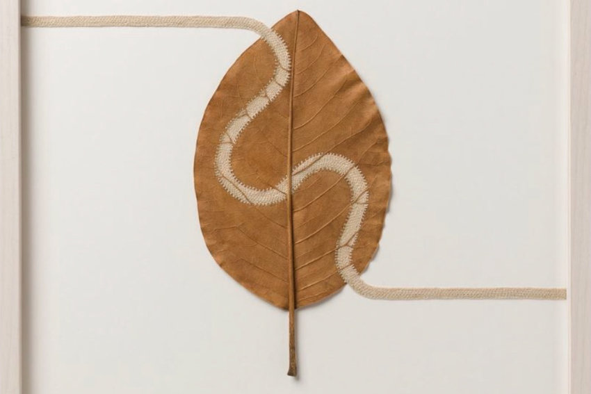 The work of Susanna Bauer can take a considerable amount of time and effort, but almost exclusively uses nature, like the magnolia leaf with cotton thread piece.