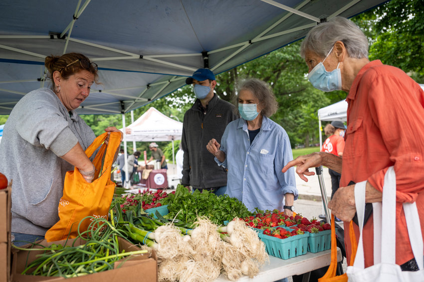 Bronxites buying produce at the Saturday farmers market outside of Clinton High School in Jerome Park.