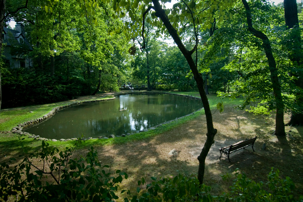 Indian Pond in the Fieldston Historic District, photographed in August 2010.