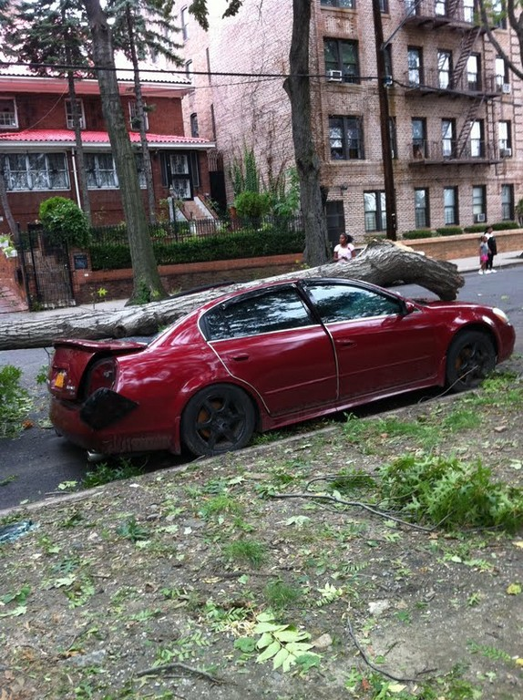 Saturday night's storm claimed this car, which remained parked near Sedgwick Avenue and Giles Place on Sunday afternoon.