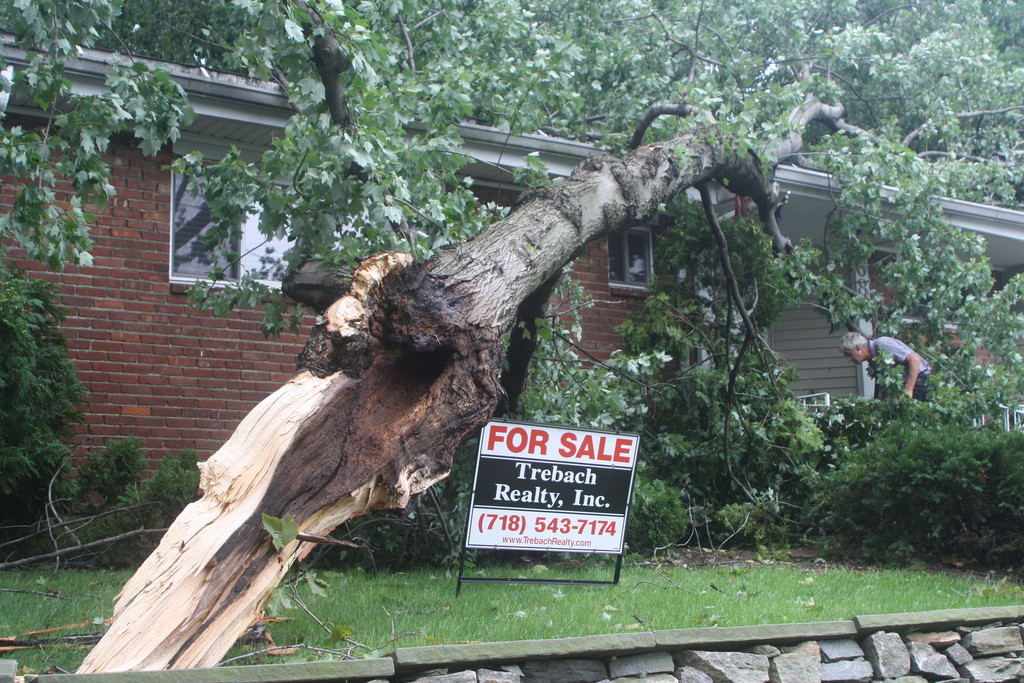 A tree smashed into a house on West 232nd Street by Independence Avenue.