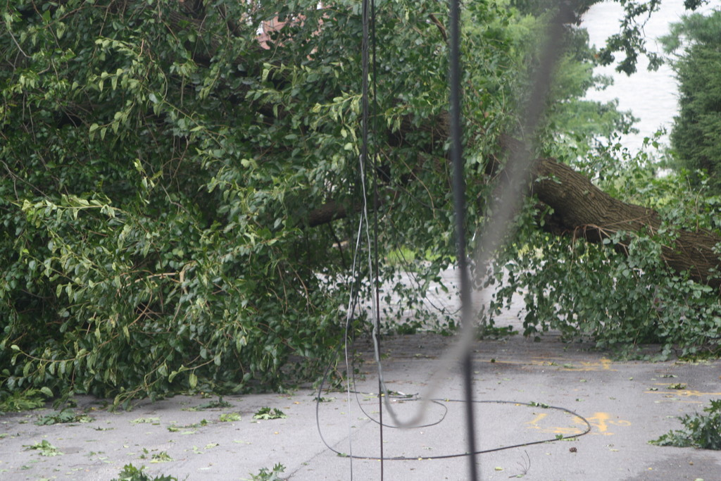 Telephone and cable lines came down on West 231st Street near Palisade Avenue.