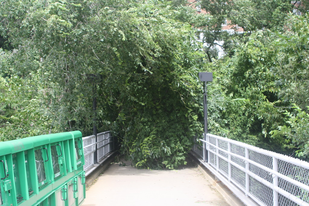 A tree down at the pedestrian bridge at the Spuyten Duyvil Metro-North Station on Sunday.