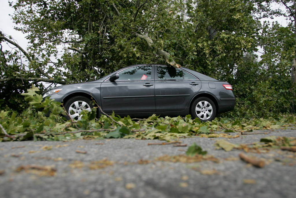 Branches and leaves cover a car on 232nd by seton park as a result of Hurricane Irene.