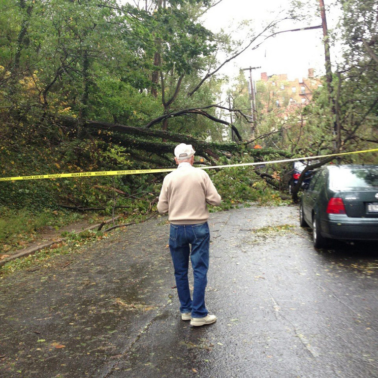 Danielle Rehfeld shared this photo of a man surveying a Riverdale street.