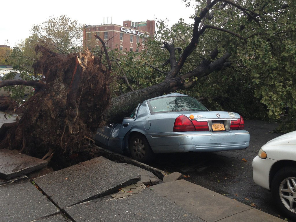 Bob Drake shared this photo of a tree crushing a car parked on Albany Crescent between West 231st and West 233rd streets.