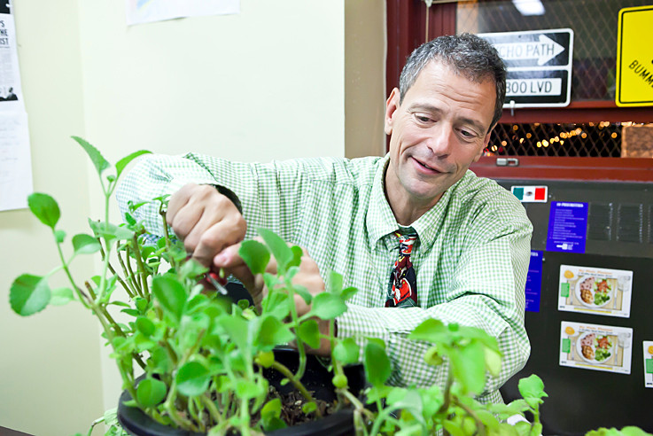 Stephen Ritz creator of the Green Bronx Machine, trims an Oregano plant in his Hunts Point school on Nov. 26.