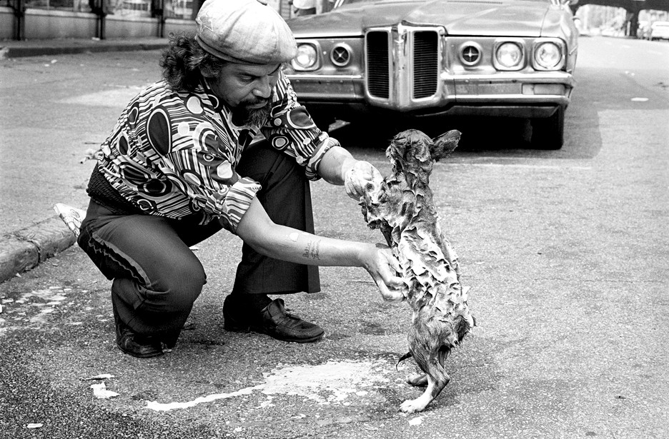 'Hombre con Perrito,' South Bronx, 1979, by Francisco Molina Reyes II. (Man with Little Dog)