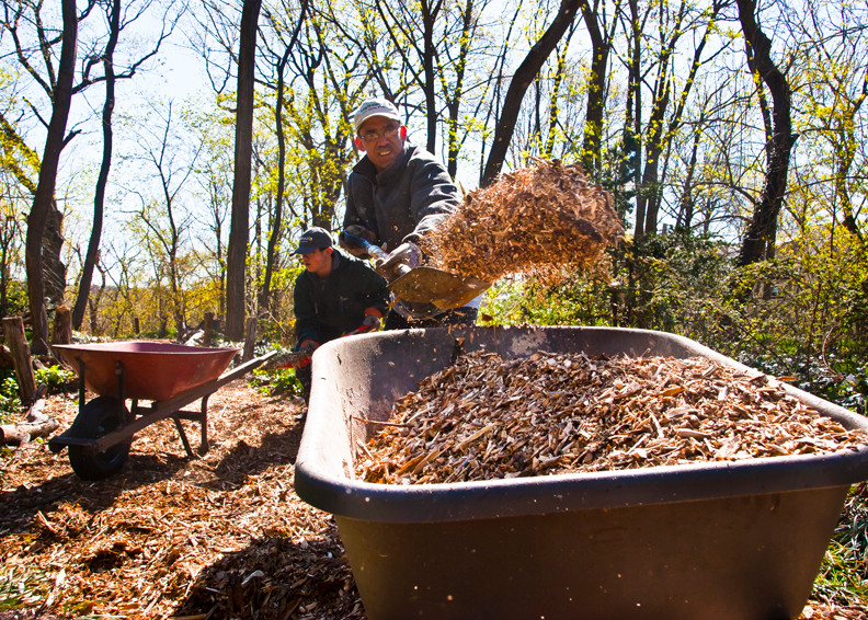 Father and son George Gabriel, foreground, and Elias Gabriel, 13, shovel mulch into a wheel barrow for a pathway.