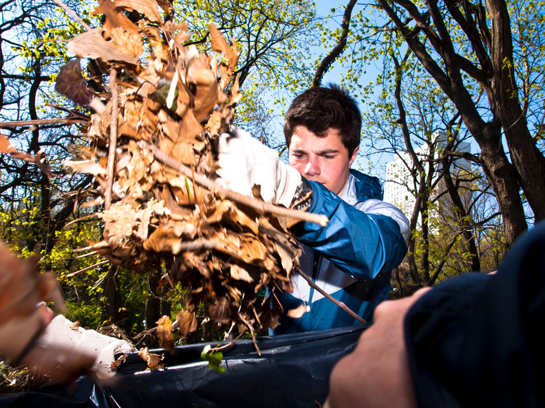 Ethan Rosenthal, 16, an RCS student, dumps a handful of dead leaves into a trash bag.