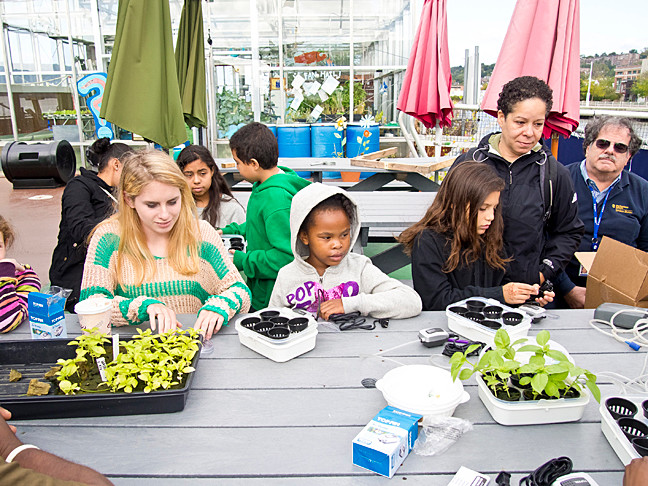 Children take a workshop on hydroponically planting basil while parents and volunteers watch Sunday.