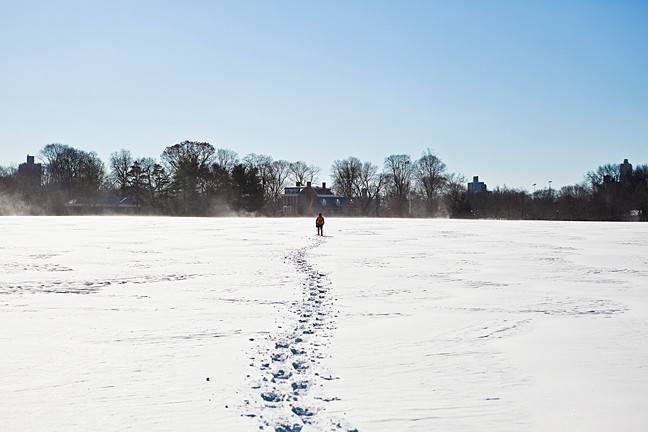 With the temperature in the teens, Van Cortlandt Park resembled a frozen desert on Jan. 3.