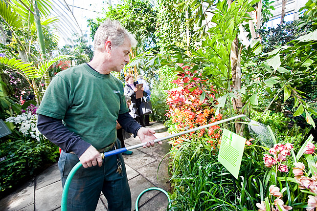 Gardener and foreman Robert Berner waters orchids on Feb. 28, a members-only day.