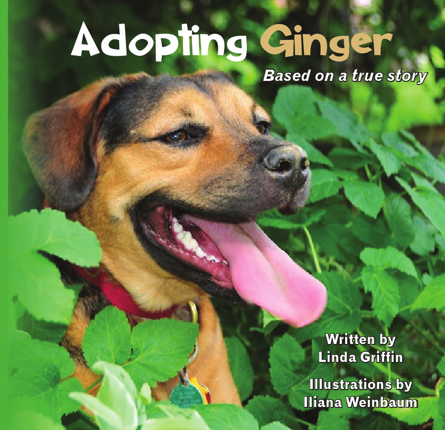 Adopting Ginger book cover