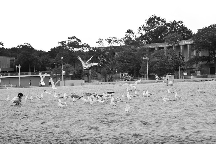 Abigail Hernandez, 3, feeds the seagulls at the end of the day at Orchard Beach on Monday.