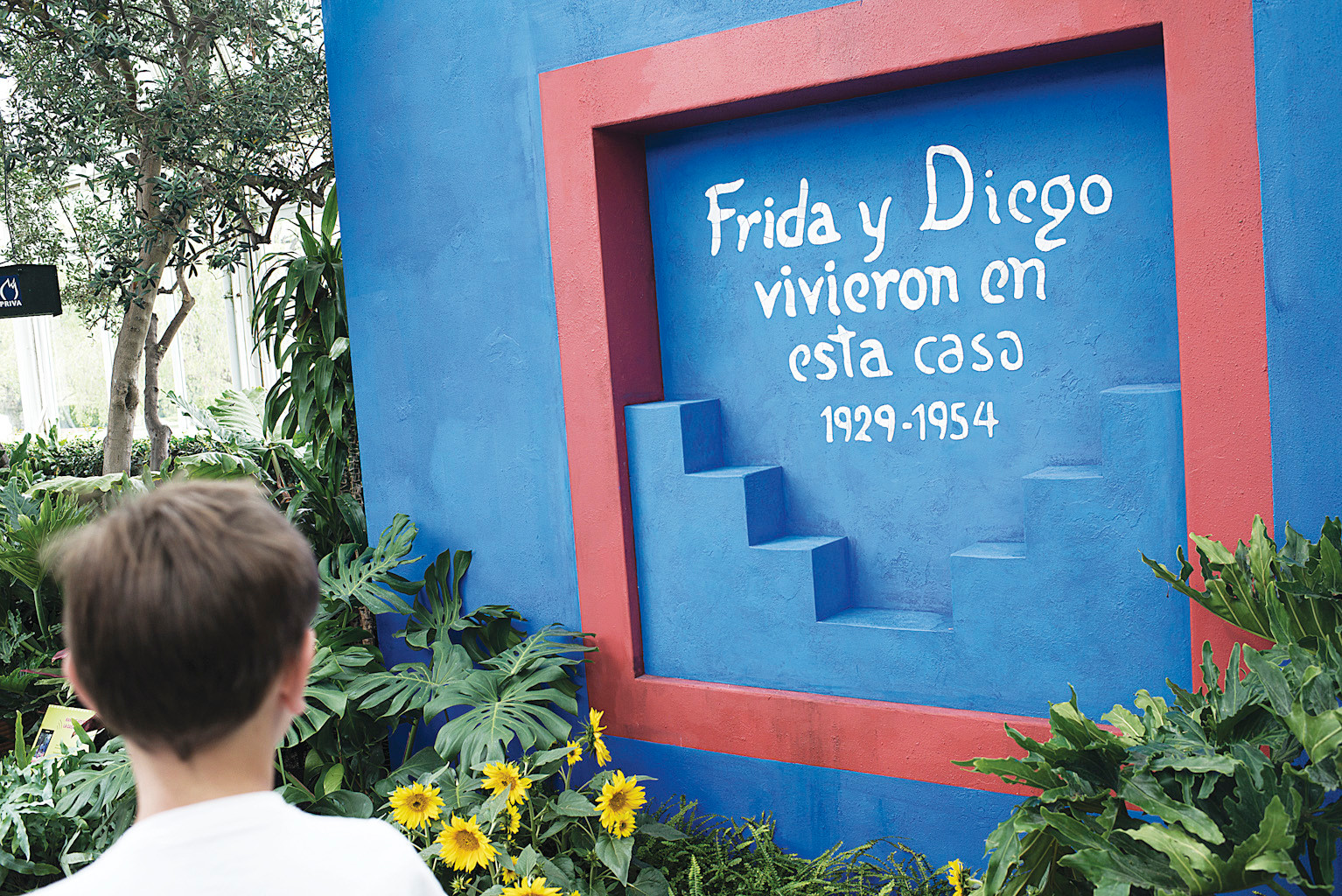 The home of Frida Kahlo and her husband Diego Rivera in Mexico City was known as 'Casa Azul.'