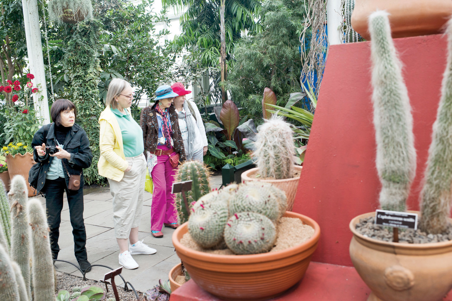 The exhibit in the conservatory building featured a 're-imagining' of the artist studio and home used by Frida Kahlo and her husband Diego Rivera, part of which featured a large pyramid for plants and artwork to sit.