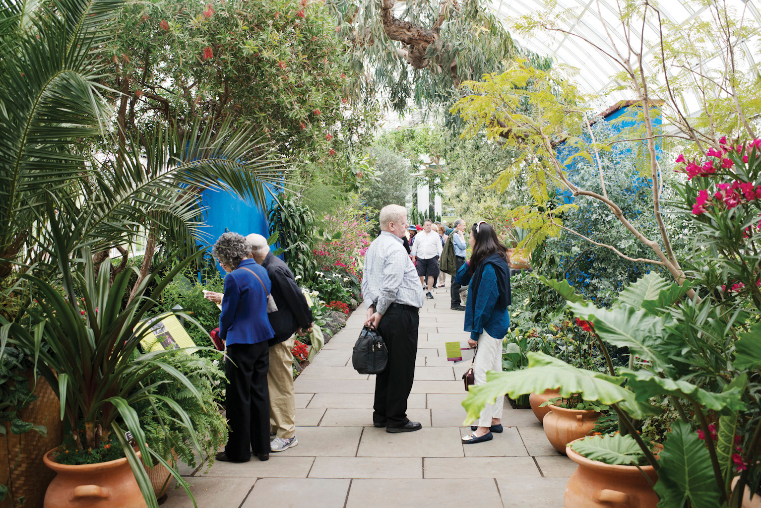 Members of the garden were given early access to the exhibit, and are seen here in the conservatory building.