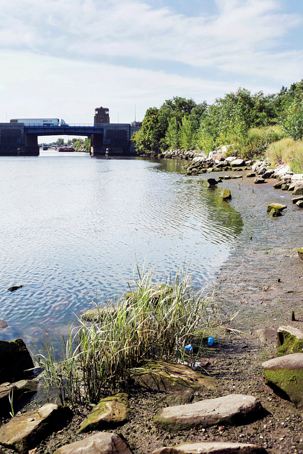 The polluted shore of the lower Bronx River looking south from Concrete Plant Park on Aug. 8.