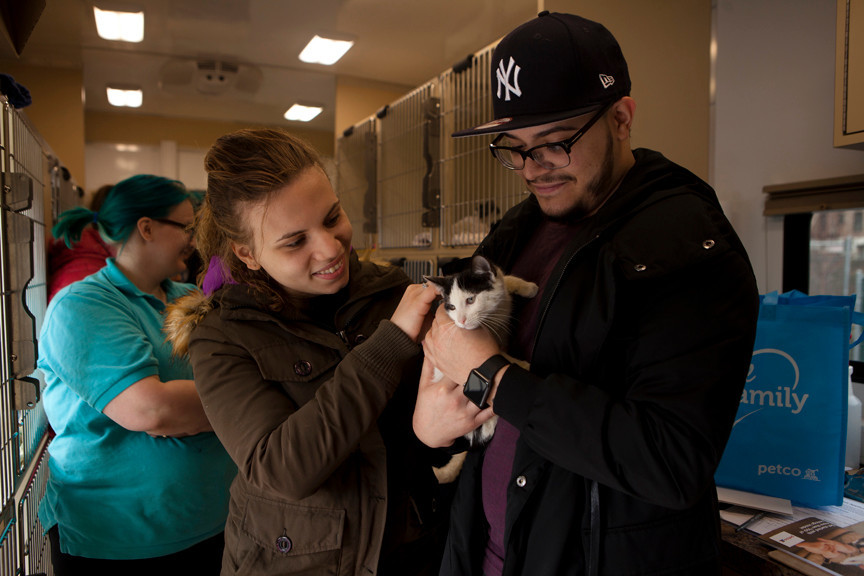 Isamar Pichardo and Miguel Martinez with an 11-week-old cat they adopted at a mobile pet adoption center in Riverdale on Sunday.