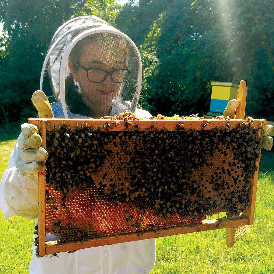 Valentina Ramirez, a Columbia graduate, wears protective gear as she holds a frame of bees--a wood frame that bees use to build a comb, deposit pollen and cultivate honey.