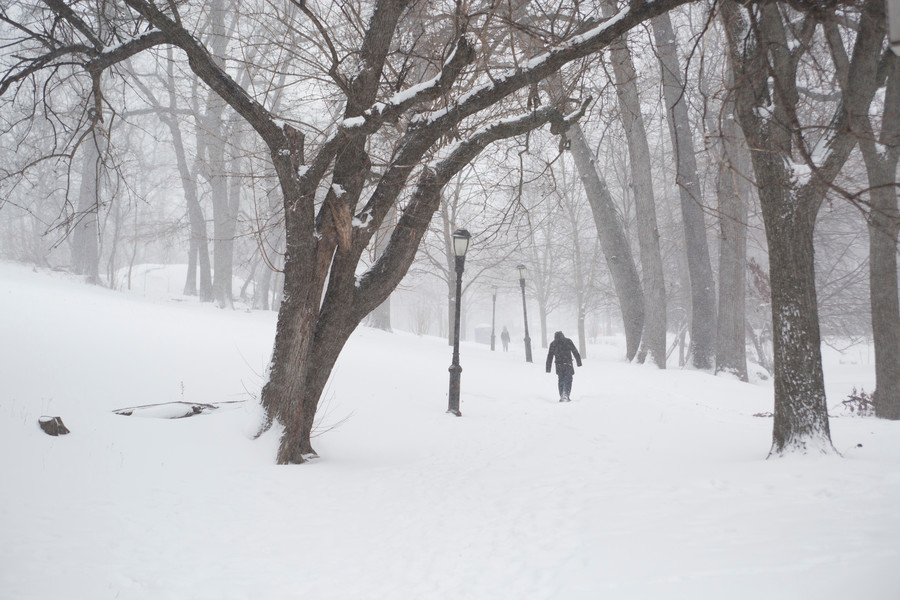A local resident walks through Ewen Park, after the first major blizzard of the year in January.