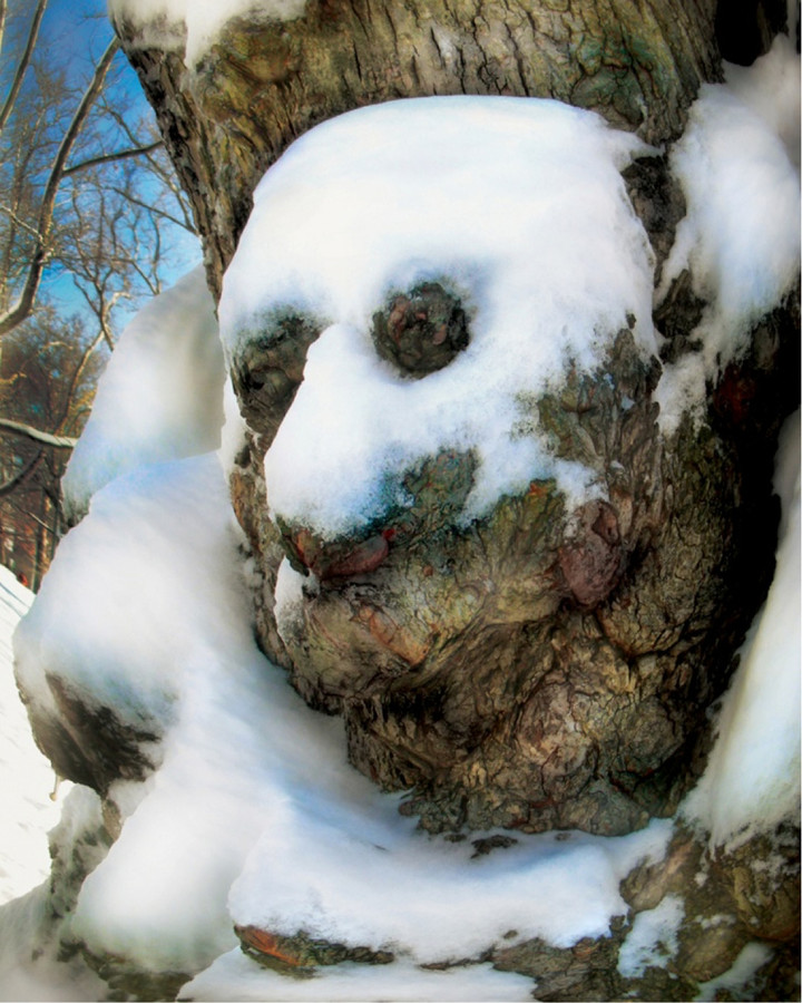 In 'Ice Man' by Ner Beck, far left, the photographer captured a snowy face encountered in Central Park.