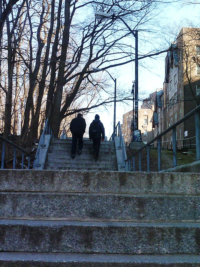 The northwest Bronx has more step streets, such as the one above near Vannie, than any other part of the borough.