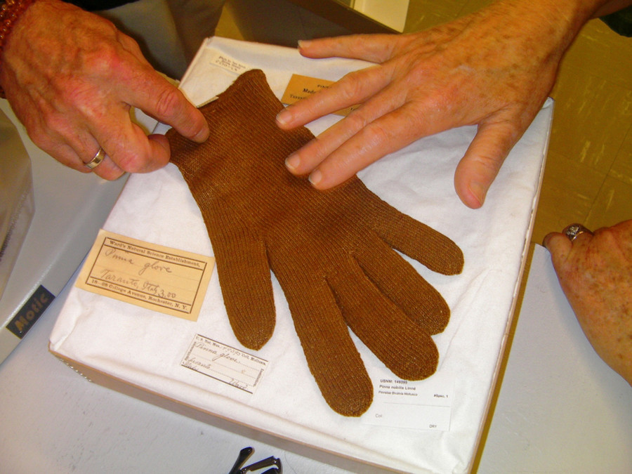 This sea silk glove was likely crafted in Italy in the late 19th century.