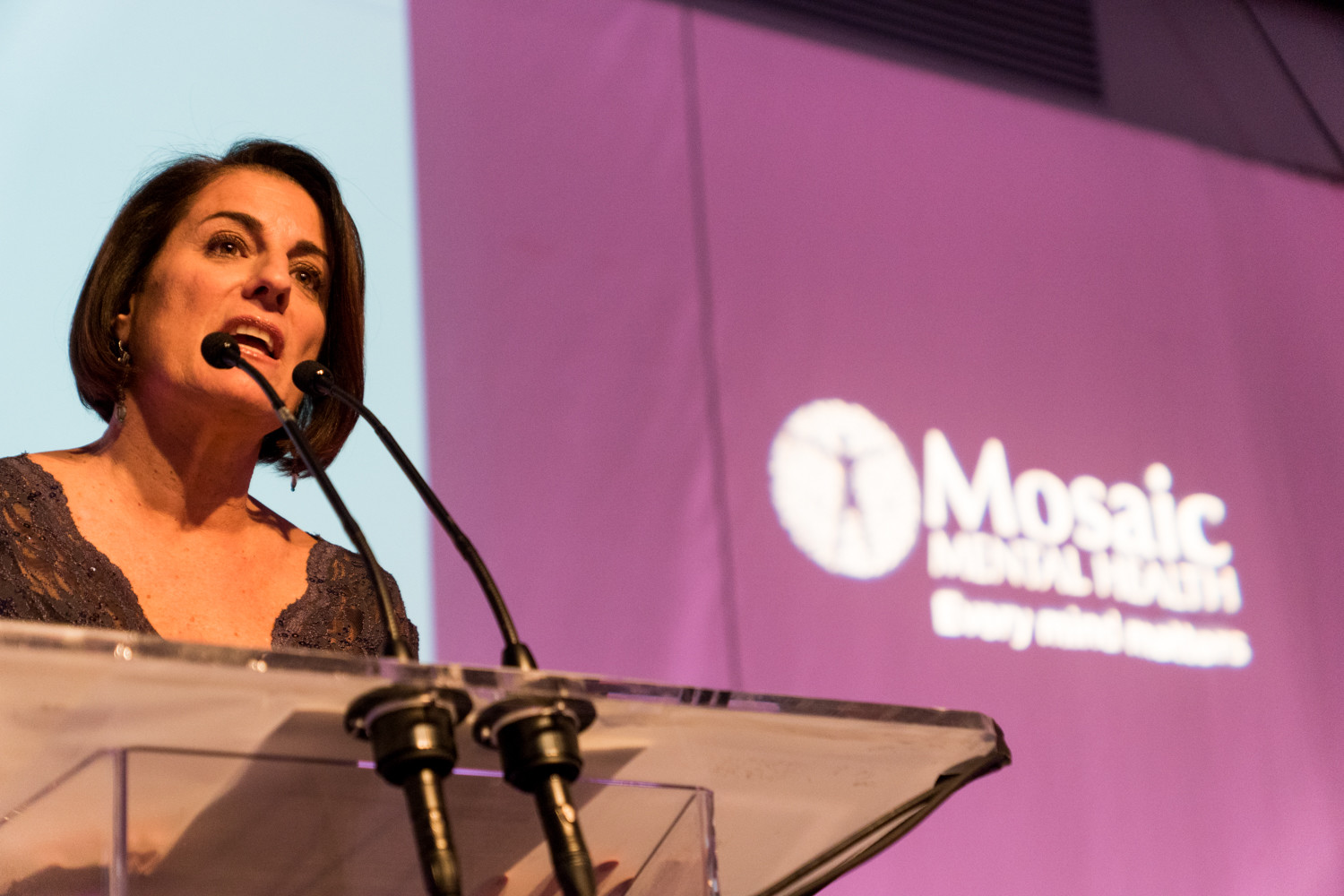 'We serve people from cradle to grave,' said Donna Demetri Friedman, the executive director of Mosaic Mental Health, at a gala celebrating the organization's rebranding. Some of its program includes on-site clinics, consultations at local public schools and vocational services.