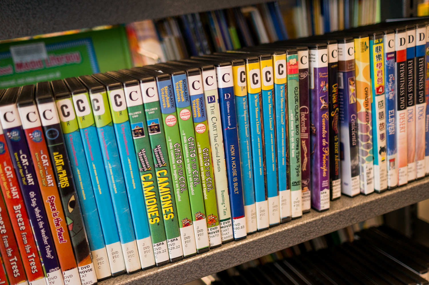 Across the New York Public Library system, DVDs have the highest late fee at $3 per day. Once a person's card has more than $15 in late fees, they are blocked from borrowing more materials. Child and young adult cardholders were recently granted one-time amnesty, where all of their fines were cleared.