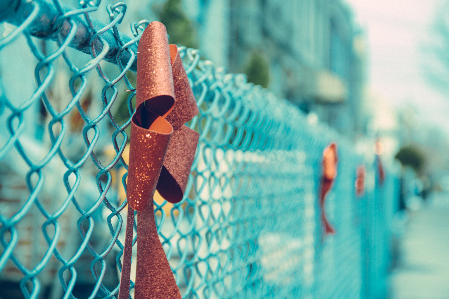Christmas bows line a fence on a residential street.