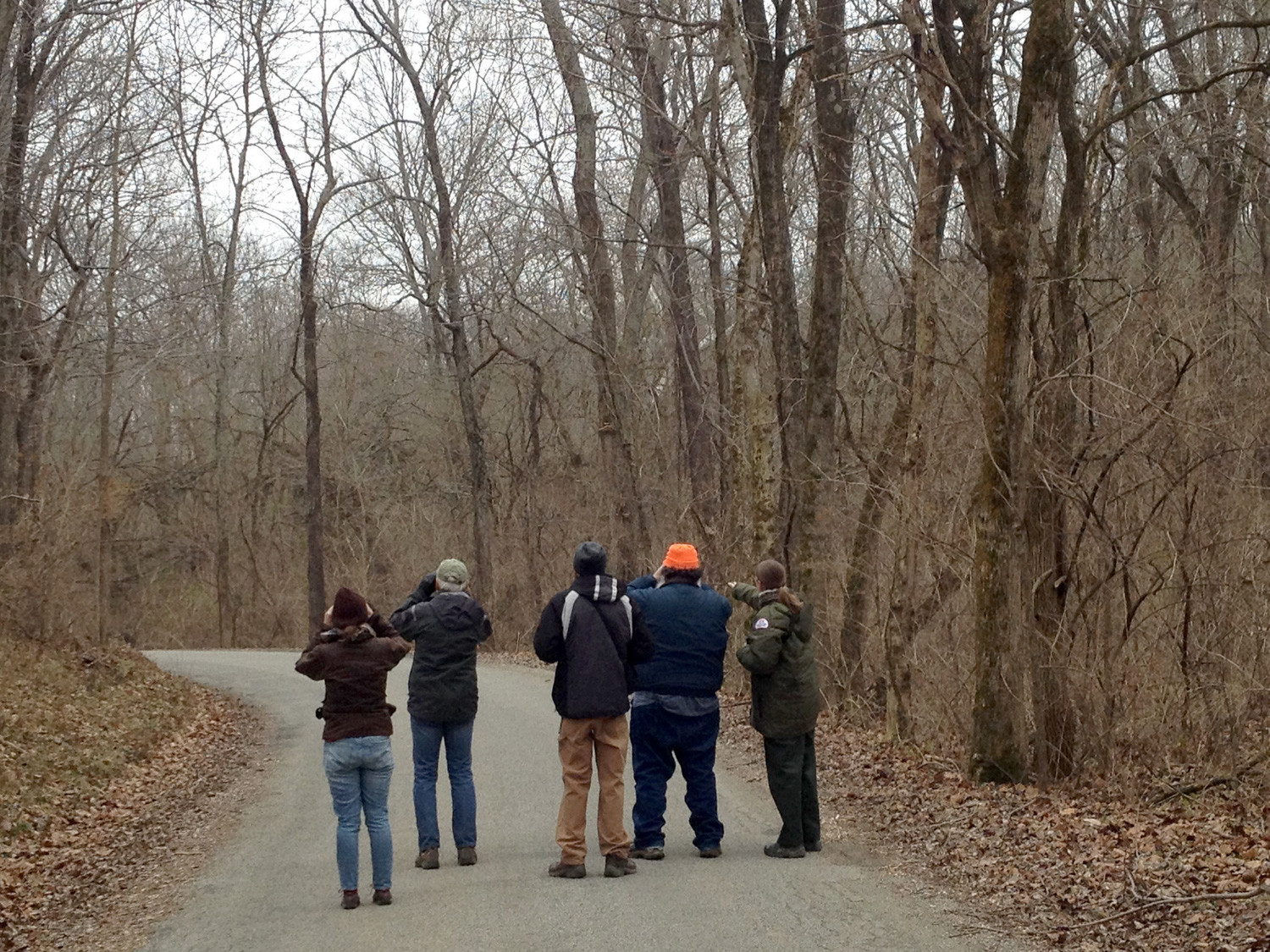The Christmas bird count takes place around the country every year, even if it isn't exactly at Christmas. Here, some bird enthusiasts tally up flying friends at Ceasar Creek Lake, Ohio.