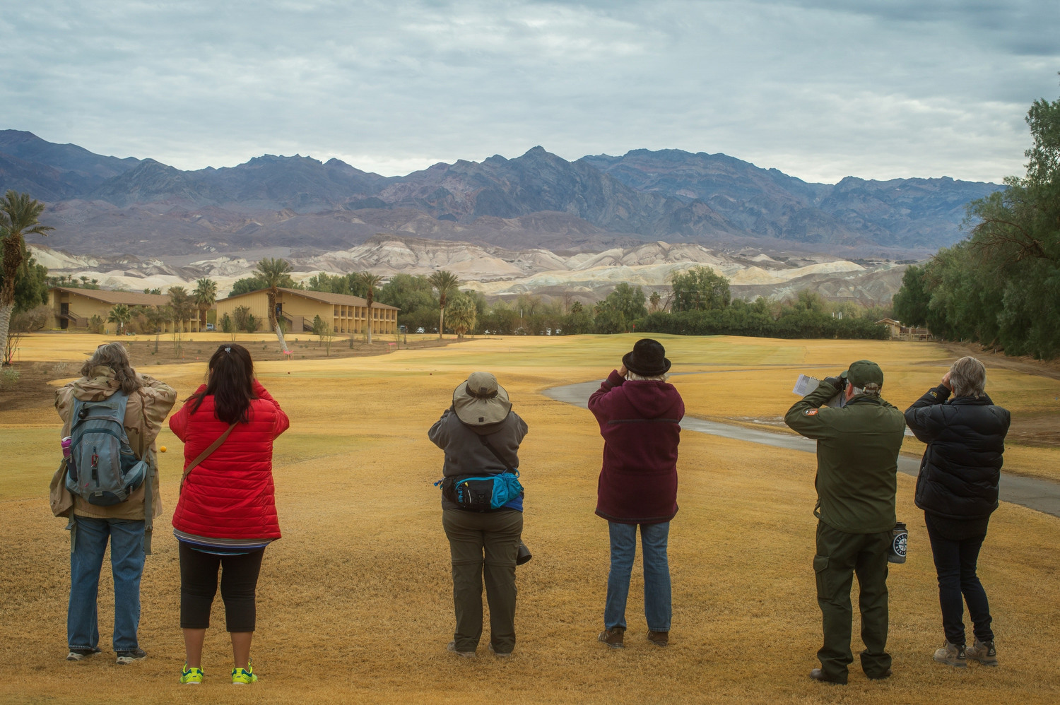 Citizen scientists take part in an annual bird count at Furnace Creek Ranch, California.