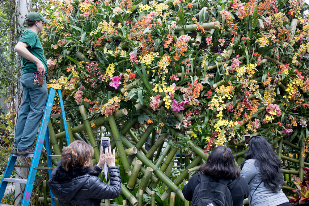 Visitors to the New York Botanical Garden take pictures while an employee maintains one of the installations by Daniel Ost, widely heralded as the world's best flower designer.