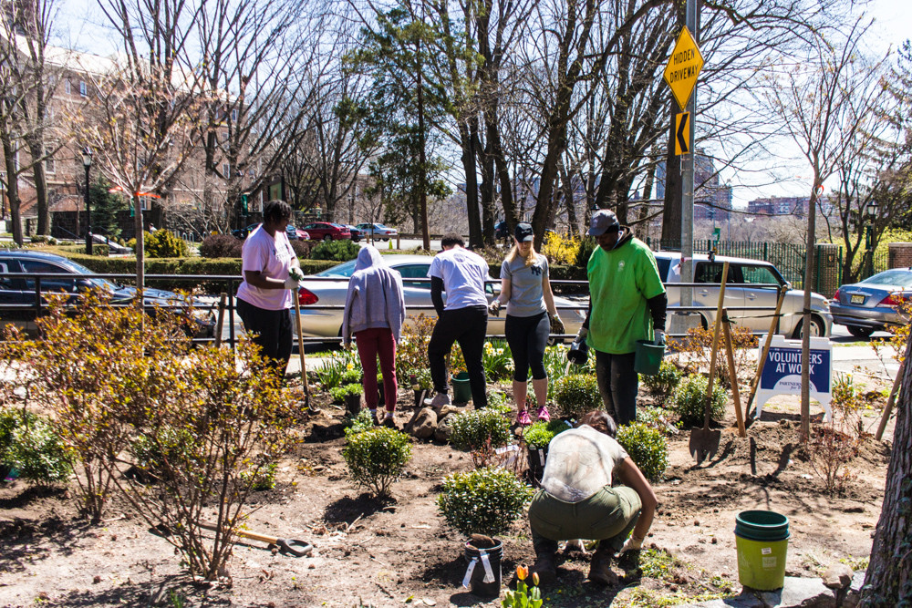 Volunteers work in the garden of Brust Park, located across the street from the main entrance of Manhattan College.