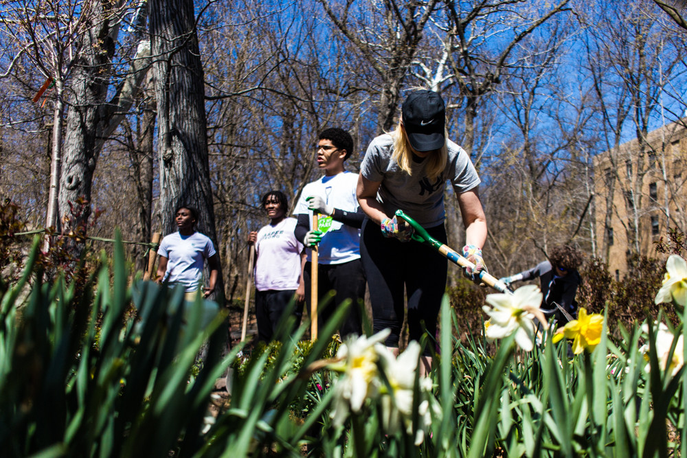 Joanne Nolan, a volunteer with the Stewards of Lower Brust Park, digs a hole. Volunteers came together last weekend to clean the park and plant new trees and flowers.