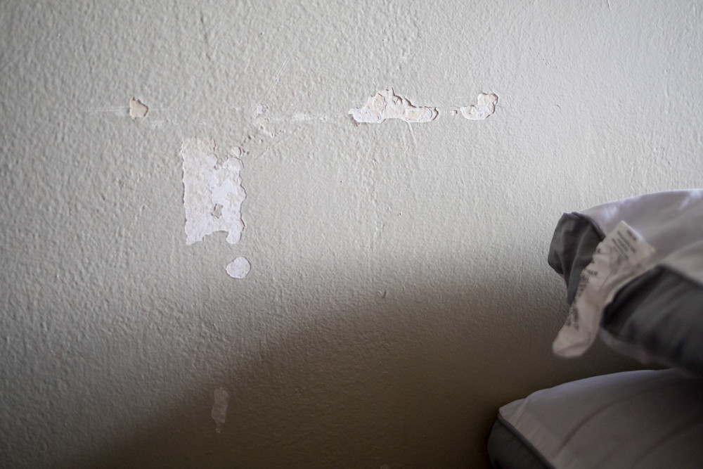 Peeling paint is among a slew of problems Denise Beebe feels should be addressed before anything else can happen at Fort Independence Houses, like implementing community solar gardens as part of a new program aimed at providing lower cost clean energy.