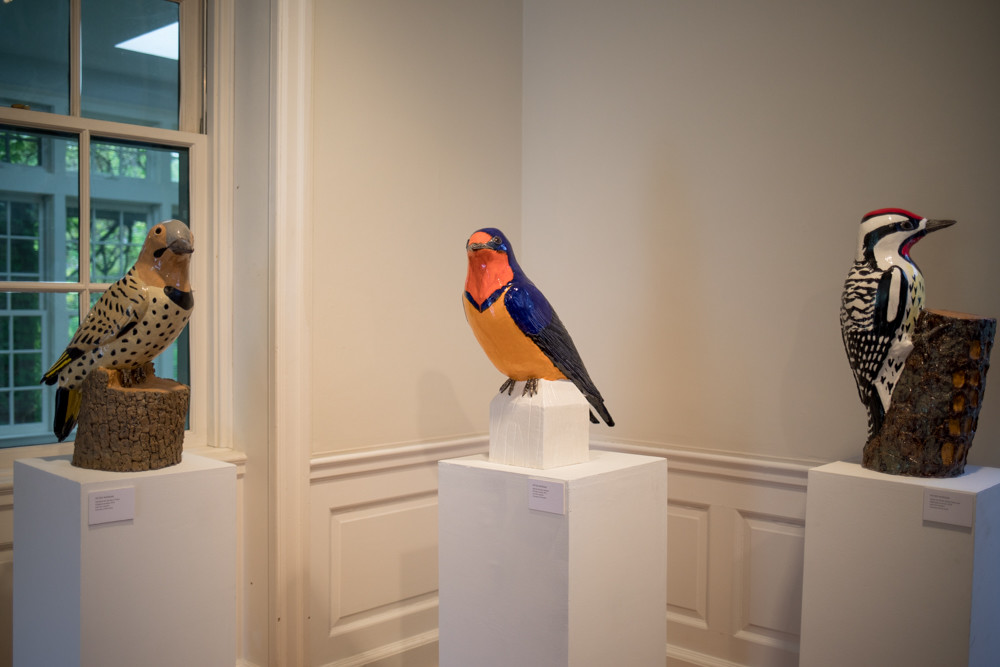 Several sculptures by bird watcher Peter Morgan are on view, above. He has been sculpting birds since 2012.