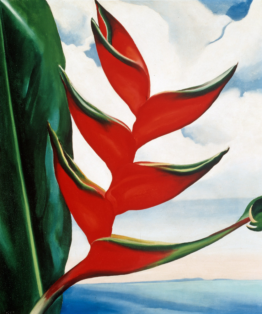 Georgia O'Keeffe uses a vibrant red to display the intensity of the heliconia plant she discovered while on a trip to Hawaii in 1939.
