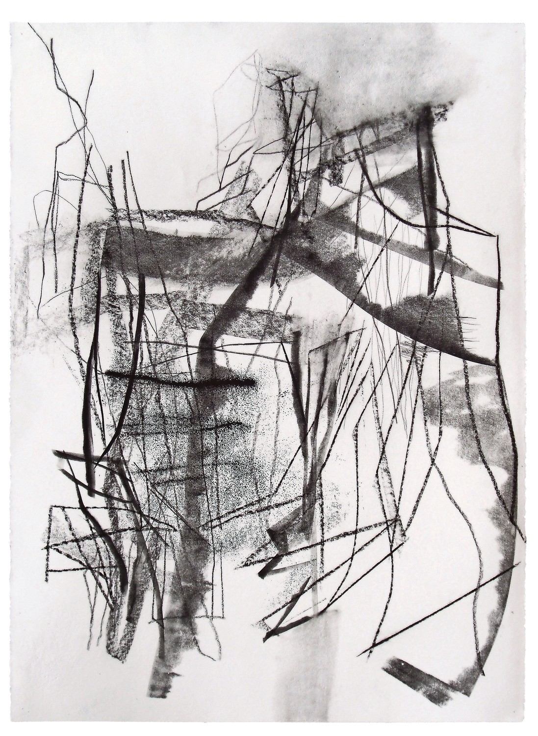 Drawing is central to Christine Hiebert's artistic practice, and she works with a variety of materials, including charcoal, ink and graphite. An exhibition of her work, 'Force Fields: Drawings by Christine Hiebert,' is on display at the Hudson River Museum through Sept. 9.