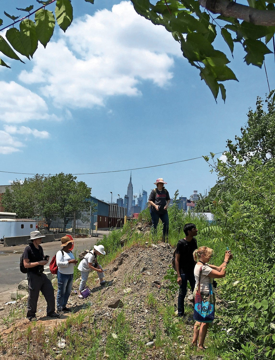 'Citizen-scientists' make observations on Railroad Avenue along Newtown Creek in Queens last July. While people are quick to spot animals and such in their environment, the same can't be said about plants — and that's something that really needs to change.