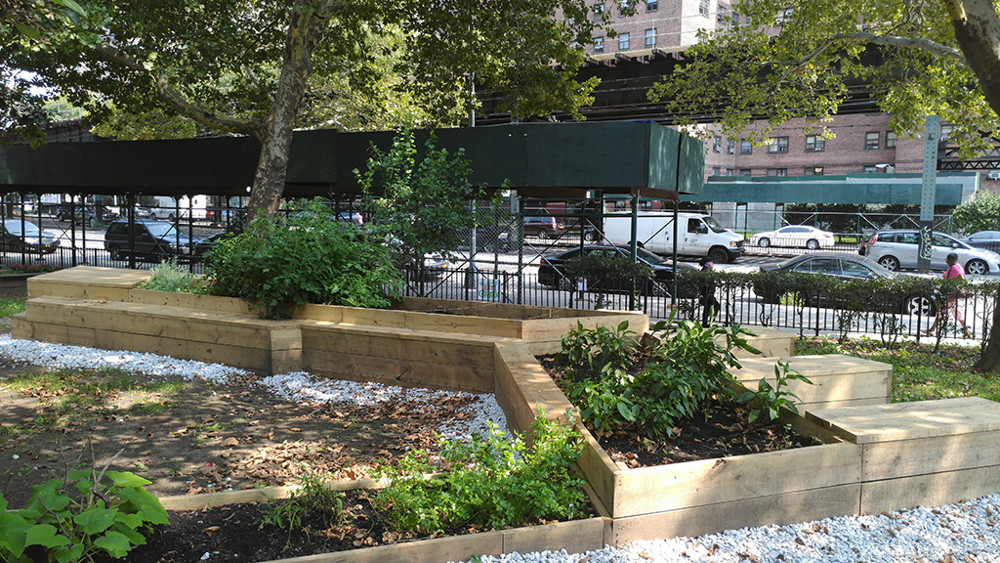 After a year of producing fresh vegetables and herbs at the Marble Hill Garden on the east side of West 228th Street and Broadway, project leaders Jacki Fischer and Juanli Carrión have expanded their community garden right across the street to continue giving residents of Marble Hill Houses a place to grow fresh food.